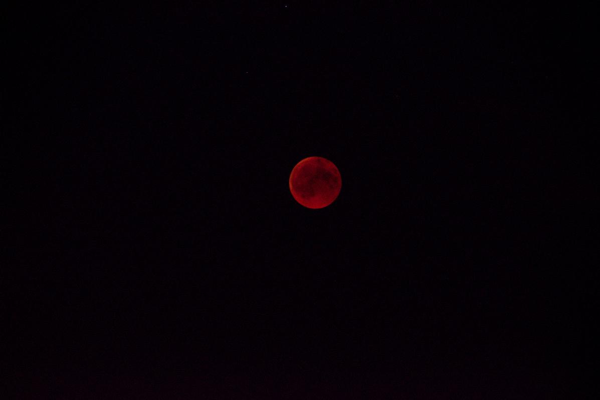 Mein Foto vom Blutmond heute über Frankfurt. 1