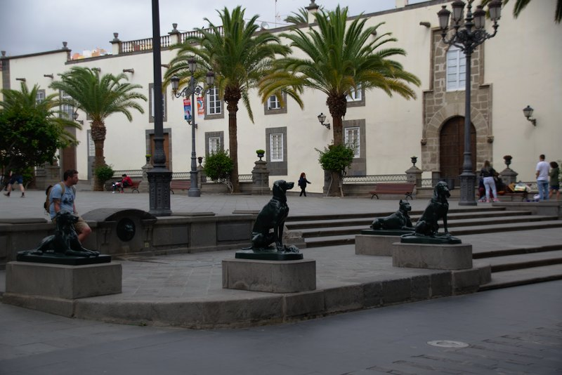 Dog sculptures in front of the Catedral de Santa Ana