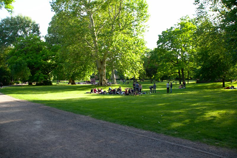 Trees in Günthersburgpark