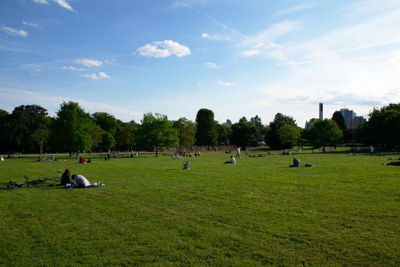 Large meadow area in Günthersburgpark