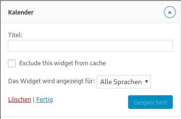 Widget Output Cache