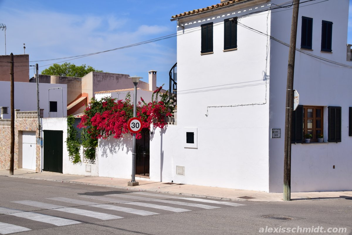House with Red Flowers in Can Picafort, Mallorca, Spain