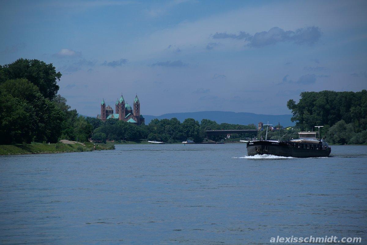 Radtour vom Erlichsee nach Speyer