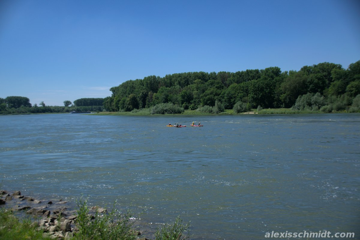 Cycle tour from Erlichsee to Speyer