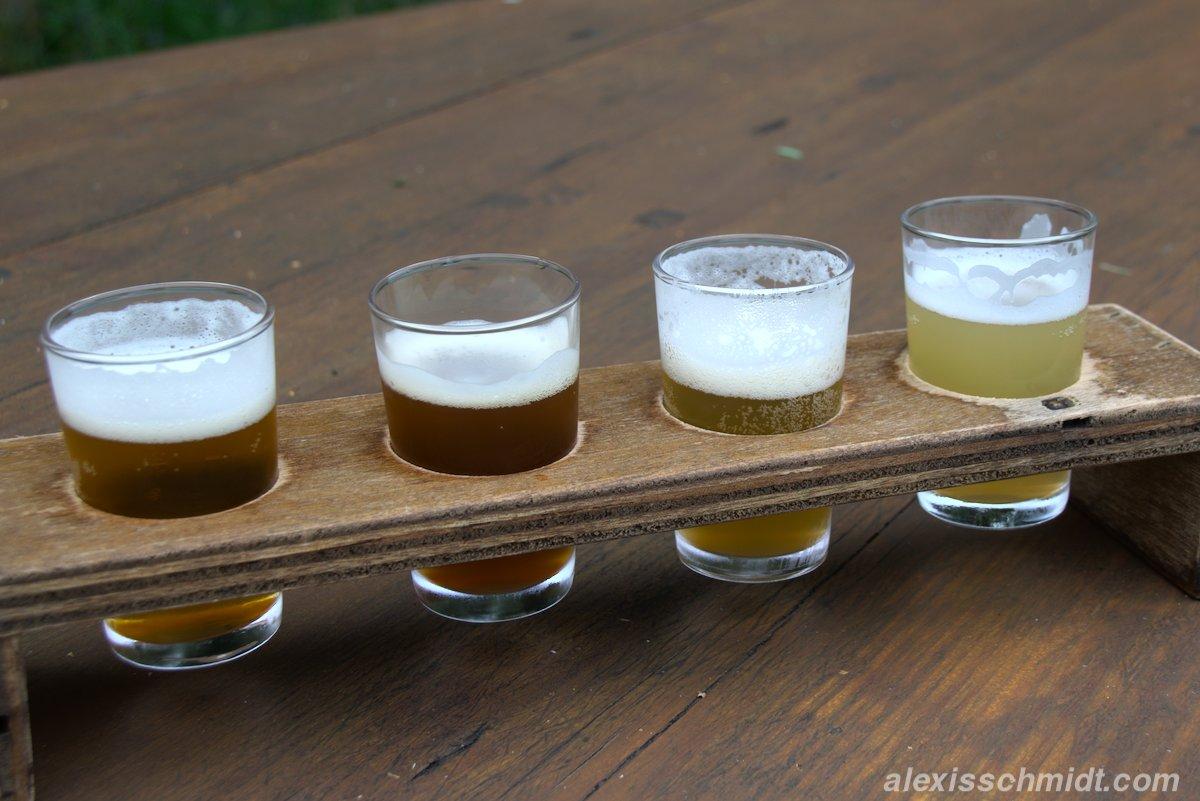 Bierverkostung bei der Texels Brauerei auf Texel, Niederlande