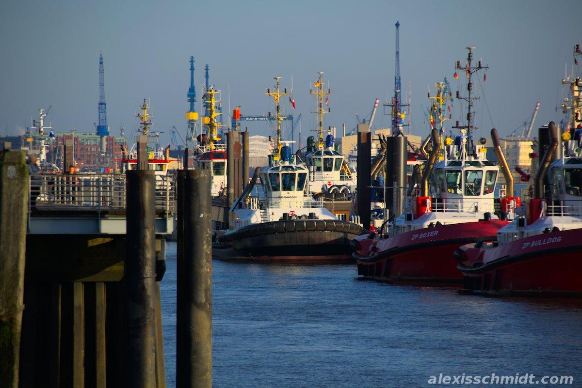 Towboats in Hamburg